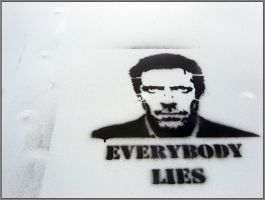 everybody lies by takemybones