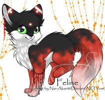 Feline Adoptable ~ 6 by BiahAdopts