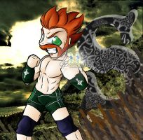 WWE - The Celtic Warrior by Matoonz