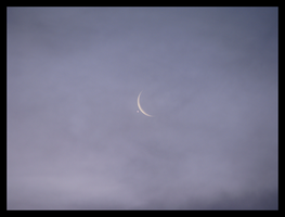 The Occultation of Venus 3 by Experiment720