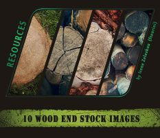 cut wood stock pack by ftourini