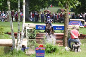 3DE Water Jump Series Bay Horse Pt 2 by LuDa-Stock