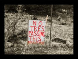 No Tresspassing,This Means You by lunerflower