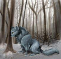 Lone in the woods by Feathers-of-Love