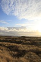 Formby - Dunes 9 by Tasastock