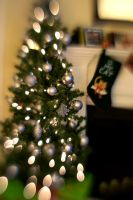 Christmas Tree And Cat Stocking by LDFranklin