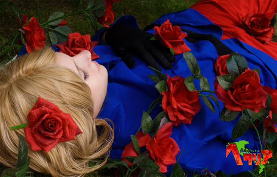 APH - France - Sleeping Beauty by Shimichi