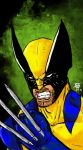 Wolverine by Fedegramajo