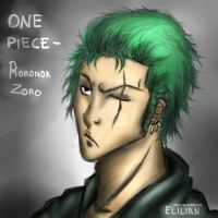 One Piece - Roronoa Zoro (Two years after) by Elilian