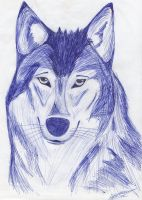 Wolf by Lapapolnoch