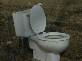 toilet by Richardbargowski