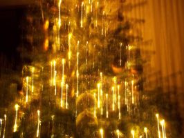 Lights of a Christmas tree by Sabbelbina