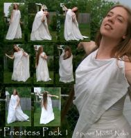 Young Priestess Pack 1 by Nekoha-stock