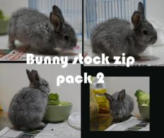 Bunny Stock 2 by China-stock