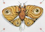angry moth by federicocortese