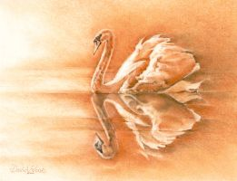 Sanguin Swan by ForestEdgeFineArt