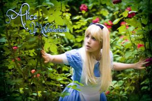 Alice in wonderland 2 by clefchan