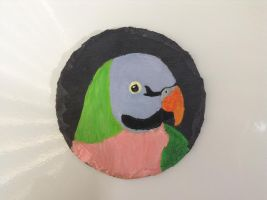 Mustached Parakeet Coaster by MadalynC