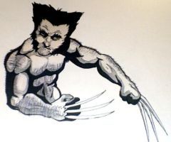 Wolverine by jaffaanonymous