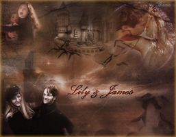 Lily and James Potter by Breeze15-03