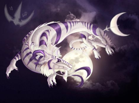 To the moon and back by Galidor-Dragon