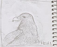Scrapdrawing-eagle by HoshiBlue21