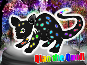 Quoll by StickFreeks
