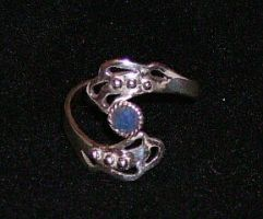 Fairy wings ring by seralune