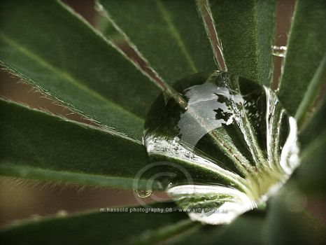 After the Rain II by Finvara