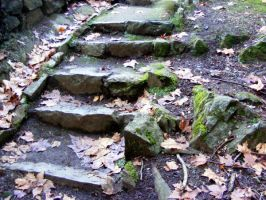 Stairs Through Woods 16 by Gracies-Stock