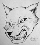 House of Wolves by asianplatypus6