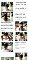 Chinese Bun Tutorial by Ginger-Biscuit-Stock