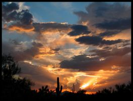 Sonoran Monsoon Clouds Sunset by RooCat