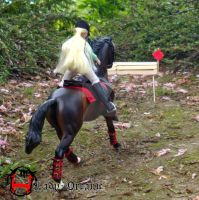 Pony on Cross-country by Lady-Orcanie