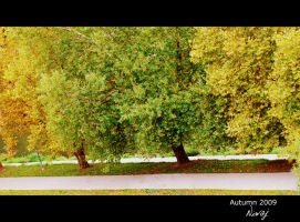 Trees by path by niwaj