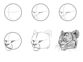 Big Cat Face tutorial by NaPawLion