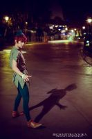 Disney: Peter Pan by mrdustinn