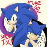 SONIC UKESEME by GaruGiroSonicShadow