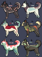 Chibi Wolf Adopts 3 -CLOSED- by SummerAdopts