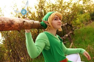 Legend of Zelda : Adventure of Link by Shappi