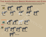 Audax Equus-Markings and Eyes by patchesofheaven74
