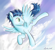 Soar through the skies by Lardon-Draconis