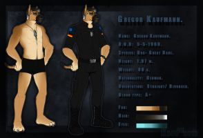 Gregor Kaufmann-Reference Sheet. by the-MadDog