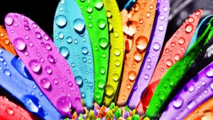 Wallpaper Colores by MeeL-Swagger