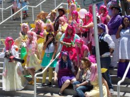 AX2014 - MLP Gathering: 06 by ARp-Photography