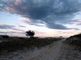 Road less travelled by maroooned