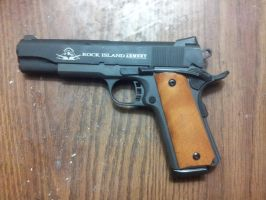 Rock Island Armory M1911 Tactical by kiabe1