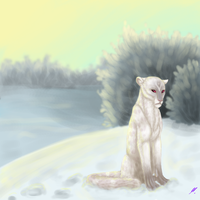 Commish for Ixmsafi - Snow by Mayka94
