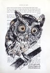 Owl (old book page) by Olvium