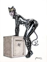 52 Catwoman Ink and Marker Sketch by John-Stinsman